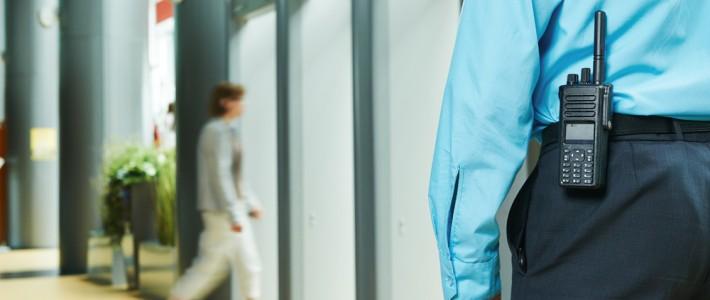 Por que se contratar uma consultoria de segurança?